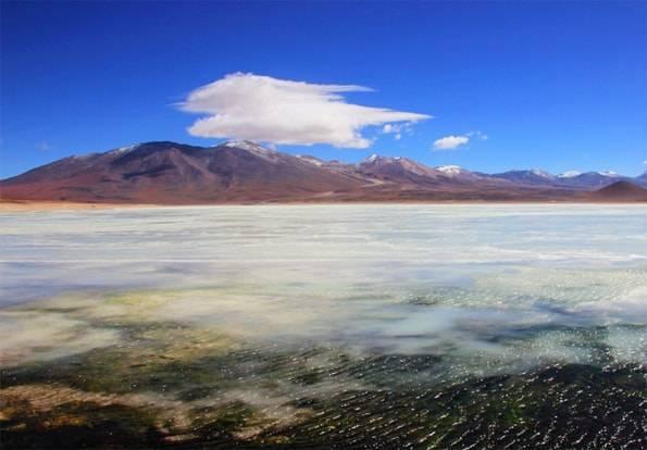 アタカマ発 ウユニ行き2泊3日ツアーで行ったラグナブランカ(白い湖)