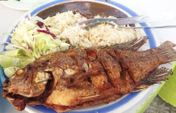メキシコ・カンクンで食べた魚のフライ